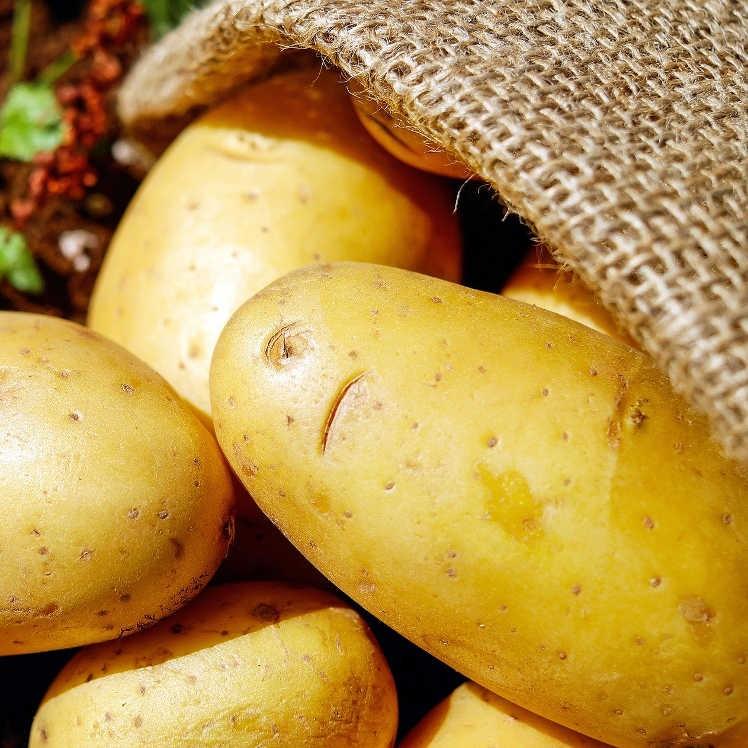 Ziemniaki młode EKO ZAGRODY 1kg